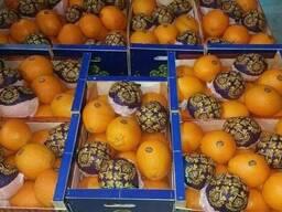 Апельсины - фото 2