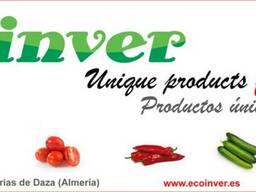Exportacion de hortalizas frescas. Somos productores.