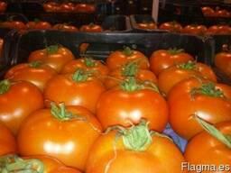 Фрукты и овощи из испании - фото 2