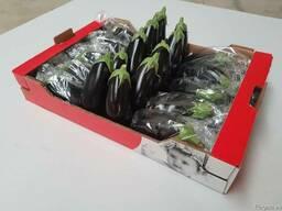 Фрукты и овощи из Испании. Прямые поставки - фото 2