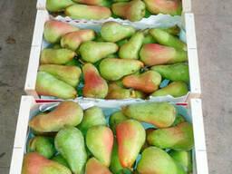 Груши и яблоки Гренни Смит из Испании . Прямые поставки .