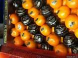 Мандарины из Испании.Прямые поставки. - фото 1