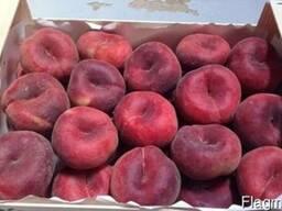 Персики и нектарины оптом из Испании - фото 3