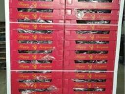 Продаем баклажаны - фото 6