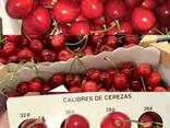 Продаем черешню из Испании - фото 5