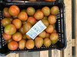 Продаем томаты - фото 4