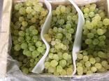 Продаем виноград - фото 2
