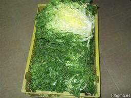 Продаем зелень - фото 3