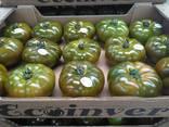 Ecoinver - Испанский Производитель Экспортер свежих овощей - фото 6