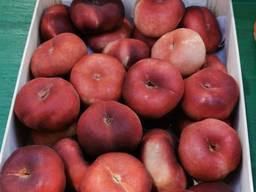Испанские фрукты и овощи. Прямые поставки.