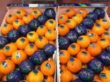 Фрукты и овощи оптом. Прямые поставки из Испании. - фото 1