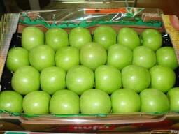 Груши и яблоки Гренни Смит из Испании . Прямые поставки . - фото 2