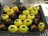 Лимоны из Испании. Прямые поставки. - фото 1