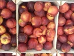 Нектарины и персики из Испании. Cтандарт 0. 65 € kg