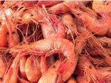 Продаем морепродукты напрямую от Испанского производителя - фото 1