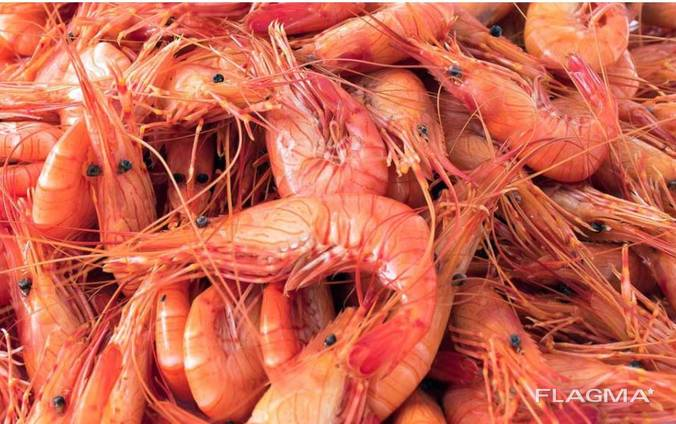 Продаем морепродукты напрямую от Испанского производителя