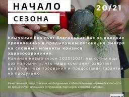 Свежие овощи от производителя. Начало сезона 2020/21